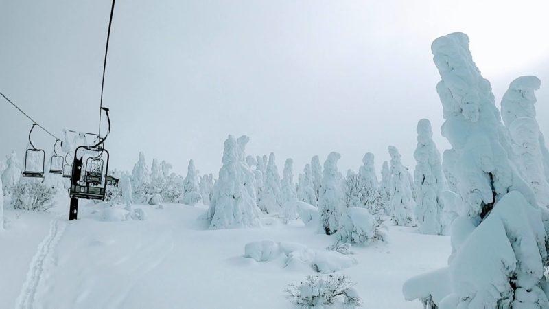 【見頃の樹氷サイズアップ 大雪明け観光】1月山形蔵王温泉スキー場   Yamagata-Zao-Onsen-Ski-Resort-in-January-is-good-for-sightseeing-because-Snowmonster-has-become-bigger.jpg