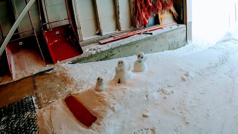 【大雪パウダー積雪+60cm 嵐の運休明け】山形蔵王温泉スキー場   Enjoying-60cm-of-heavy-powder-snow-at-Yamagata-Zao-Onsen-Ski-Resort-in-January.jpg