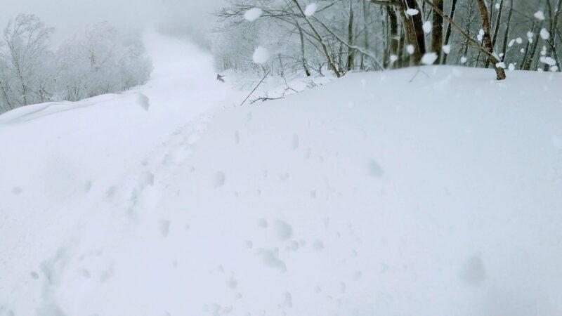 【蔵王パウダー女子 ツリーラン2月大雪寒波】山形蔵王温泉スキー場 Enjoy-the-holy-powder-snow-at-Yamagata-Zao-Onsen-Ski-Resort.jpg