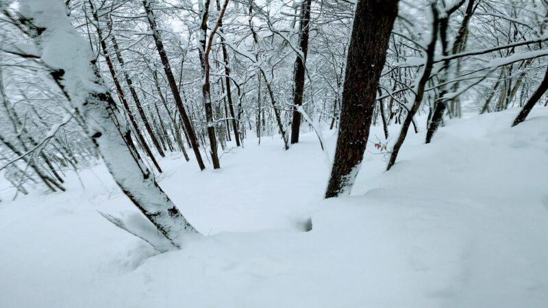 【パウダーボードチーム案内 ムラスポツアー】山形蔵王温泉スキー場   Enjoy-Yamagata-Zao-Onsen-Ski-Resort-by-Powder-Board.jpg