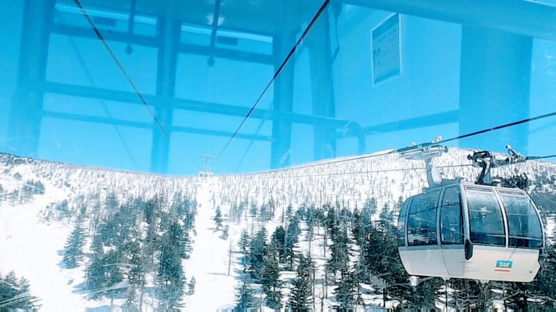 【3月下まで滑走可 立ち枯れの樹氷の木】春の山形蔵王温泉スキー場   Zao-Ropeway-Information-at-Yamagata-Zao-Onsen-Ski-Resort-in-March-Spring.jpg